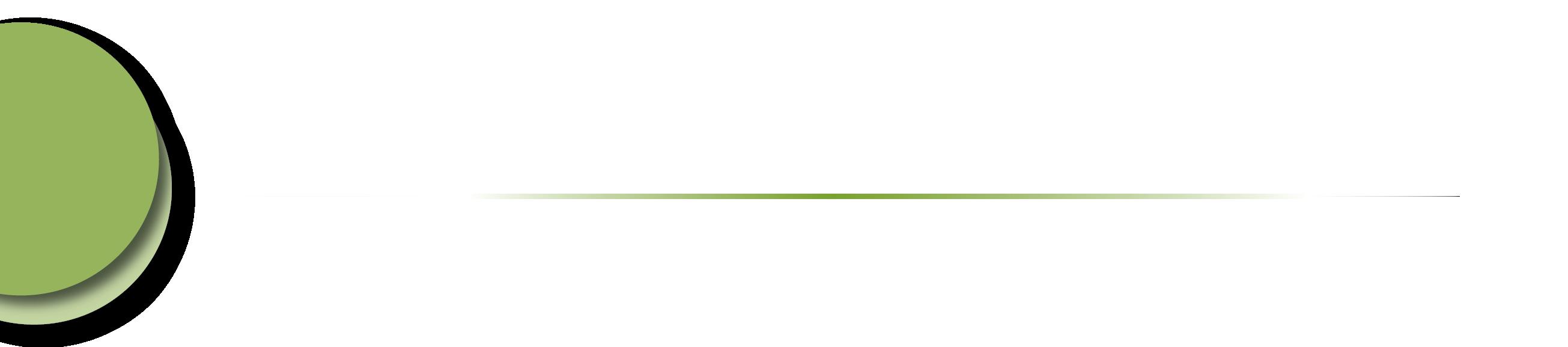MSP-Logo-Transparent-01